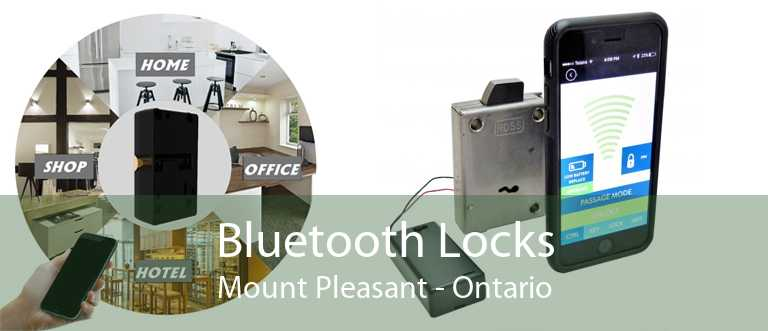 Bluetooth Locks Mount Pleasant - Ontario