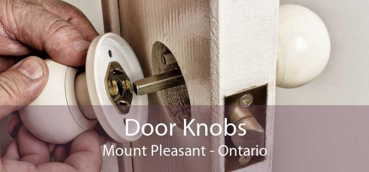 Door Knobs Mount Pleasant - Ontario