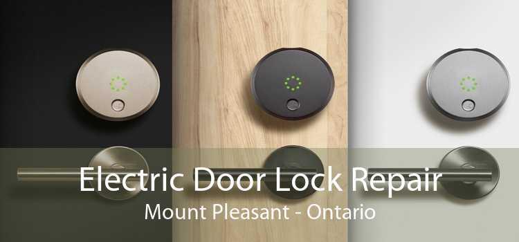Electric Door Lock Repair Mount Pleasant - Ontario