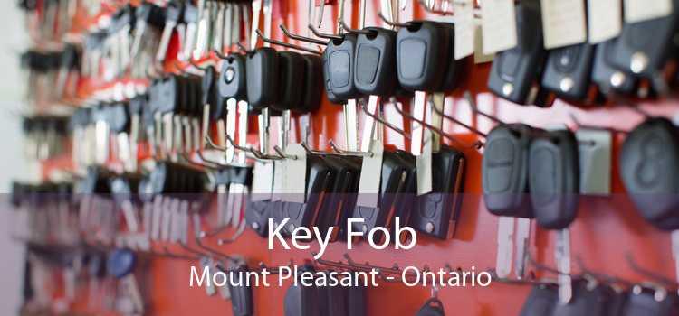 Key Fob Mount Pleasant - Ontario