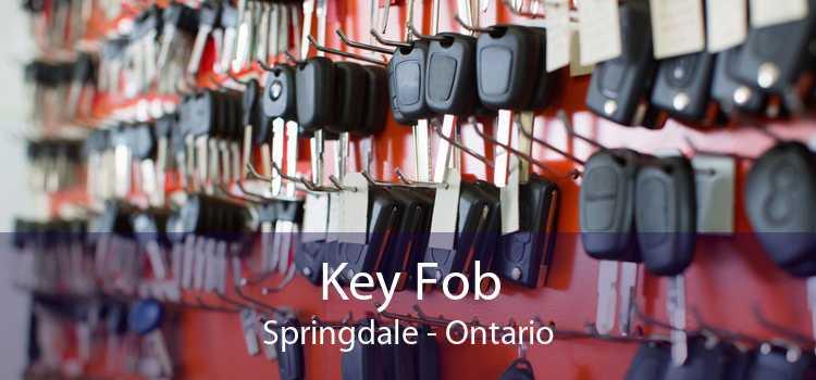 Key Fob Springdale - Ontario