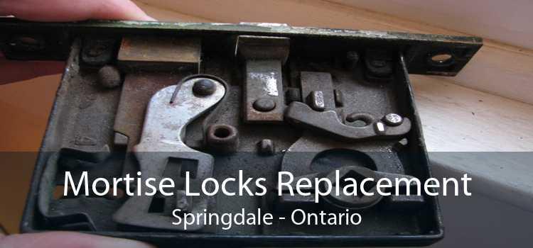 Mortise Locks Replacement Springdale - Ontario